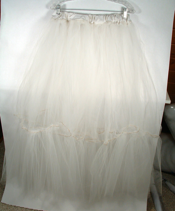 Photo of crinoline.