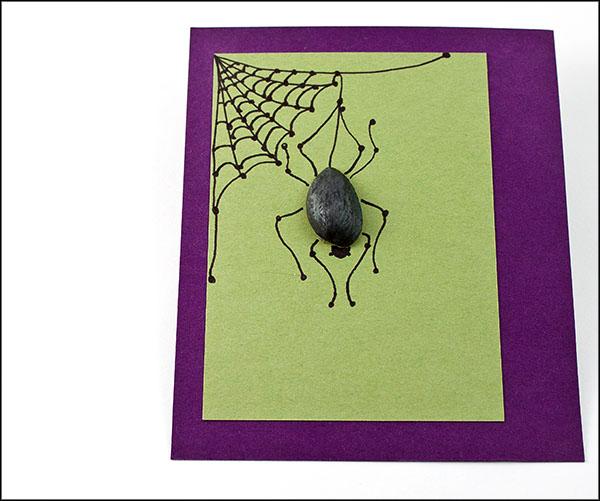 Pistachio Spider