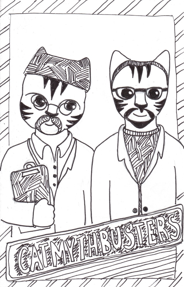 Cat art Link cartoon pen ink drawing mythbusters
