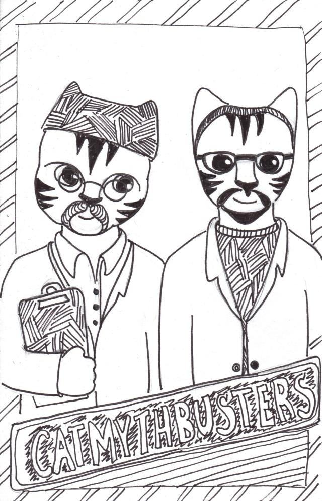 Cat art Link cartoon pen ink drawing mythbusters