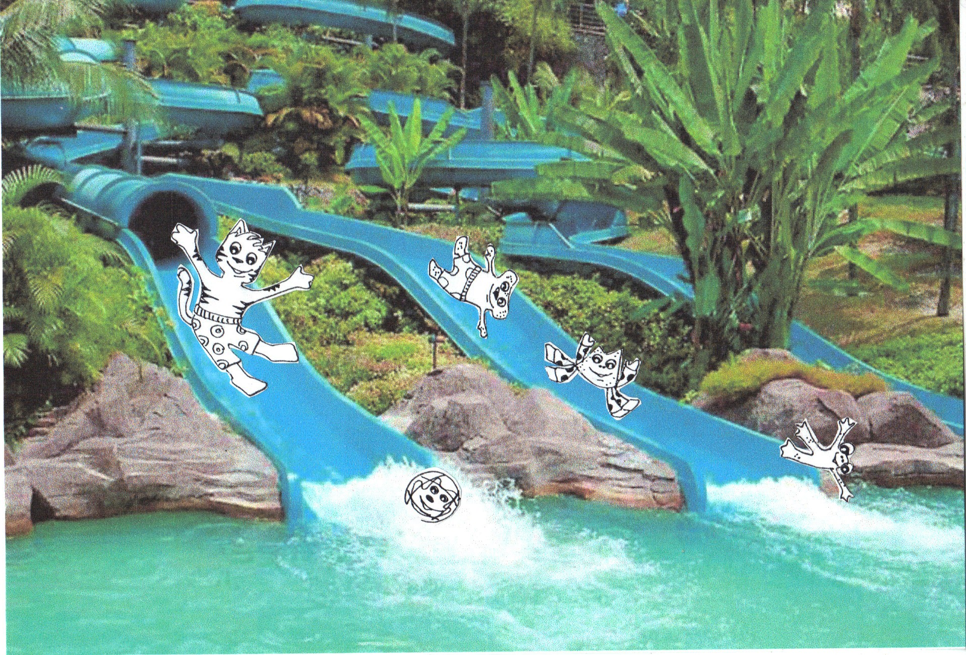 Water slides galore. What a cat!   the crafty sisters